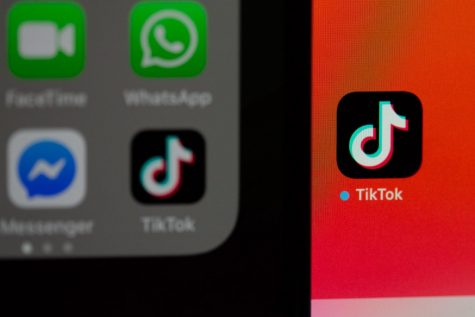Popular App; TikTok Takes the World By Storm